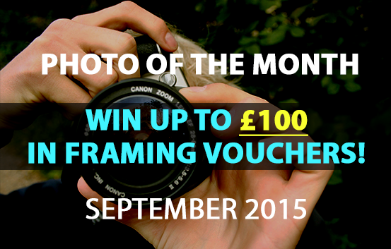 photo of the month competition September 2015