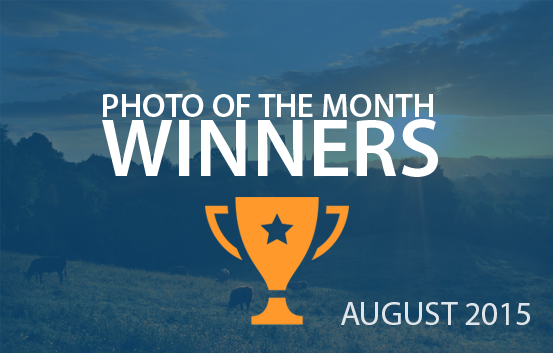 photography competition August 2015 winners