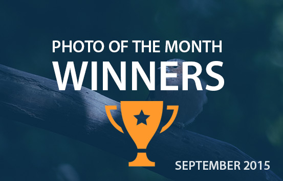 photography competition September 2015 winners