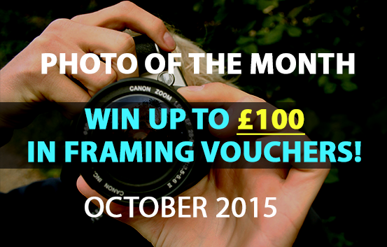 photo of the month competition October 2015