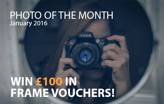 Best4Frames Photo of the Month competition January 2016